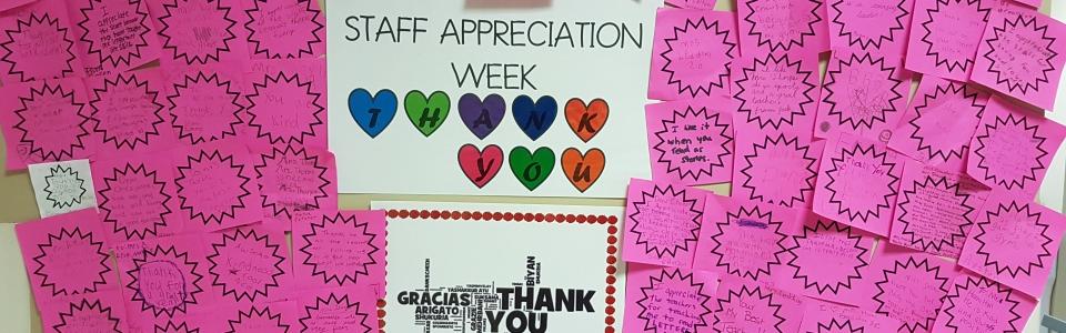 Staff Appreciation Week stars
